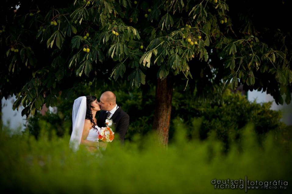 Esküvő: Melcsi és Dani